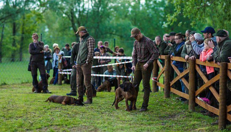 FOTO: Deň poľovníckej kynológie prilákal stovky ľudí a psov