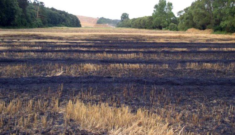 Pozor na požiare v prírodnom prostredí