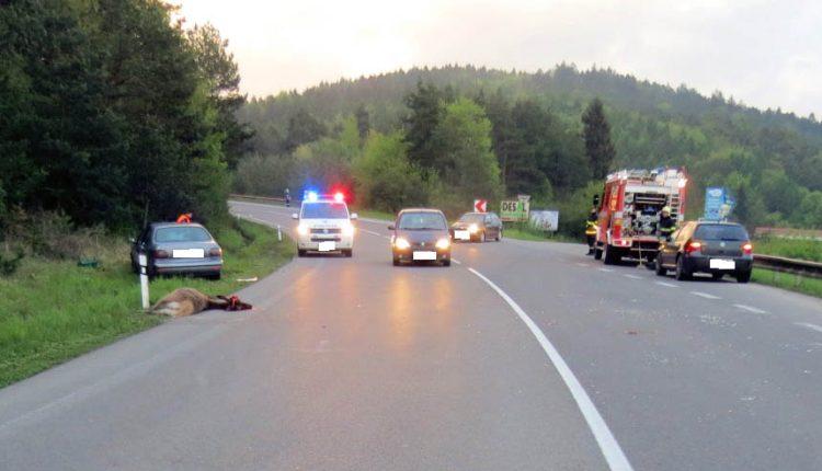 Vodička po zrážke s lesnou zverou skončila mimo cesty
