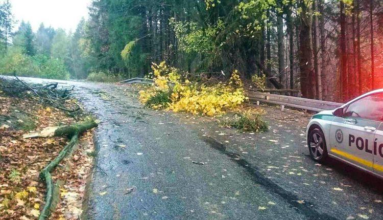 Pre silný vietor zasahovali hasiči aj v našom okrese