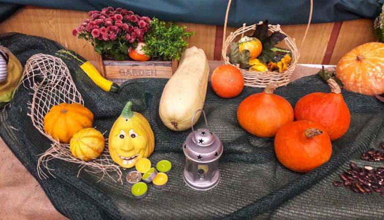 Jesenná výstava v obci Lúky
