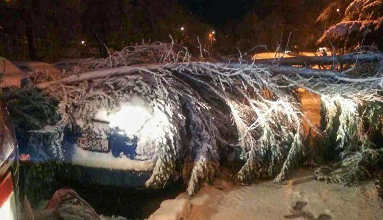 Sneh a vietor dali hasičom zabrať, kde všade zasahovali?