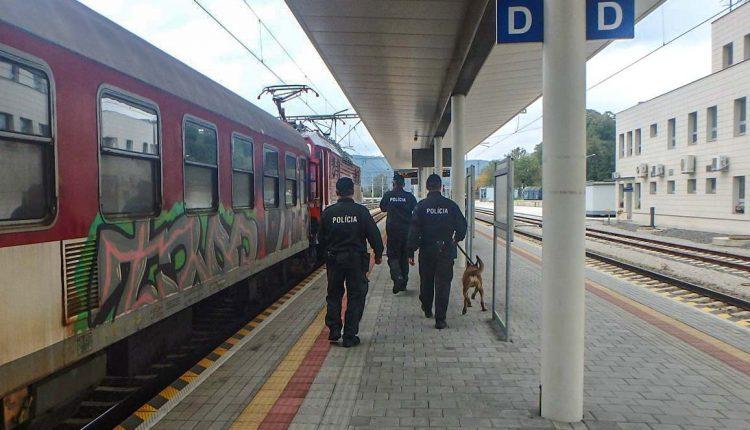 Akcia na železniciach: Čo hľadali policajti vo vlakoch?