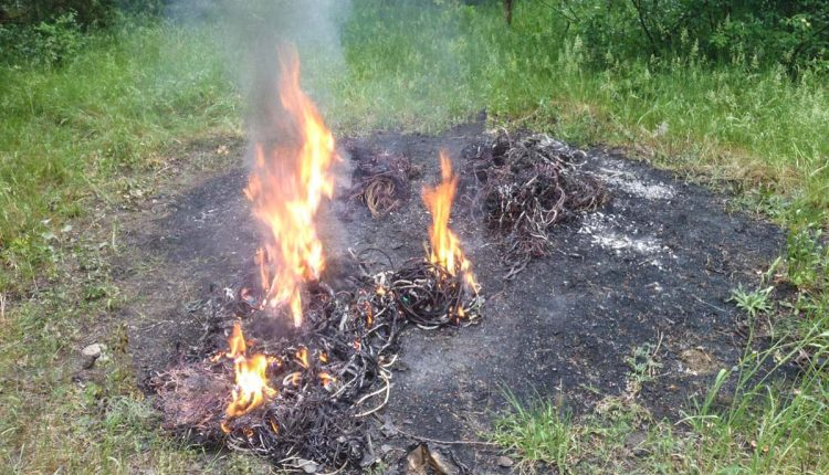 Vypaľovanie medených káblov im prekazila polícia a hasiči