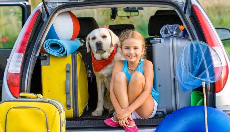 Zásady bezpečnej jazdy počas letného obdobia