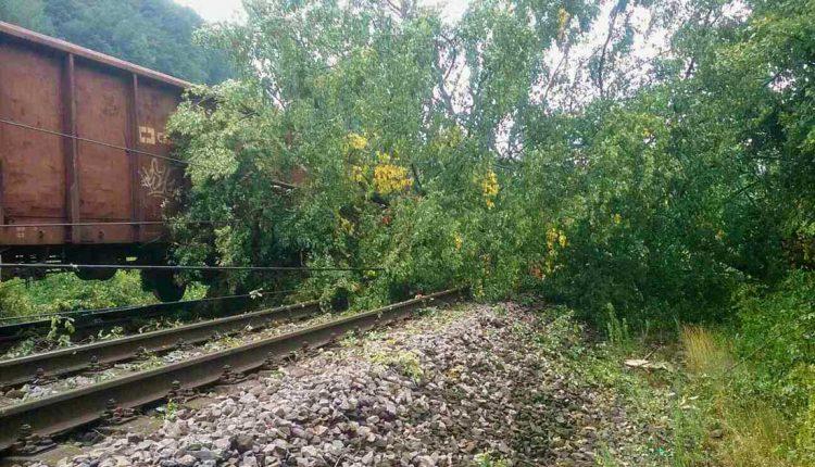 Medzi Púchovom a Považskou Bystricou vlaky nejazdili, na trať padol strom