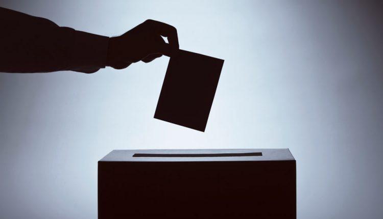 Voľby do orgánov samosprávy obcí: Informácie pre voliča