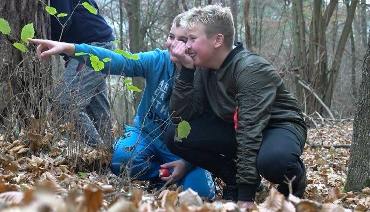 Predstavujeme vám projekt Deti deťom o lese