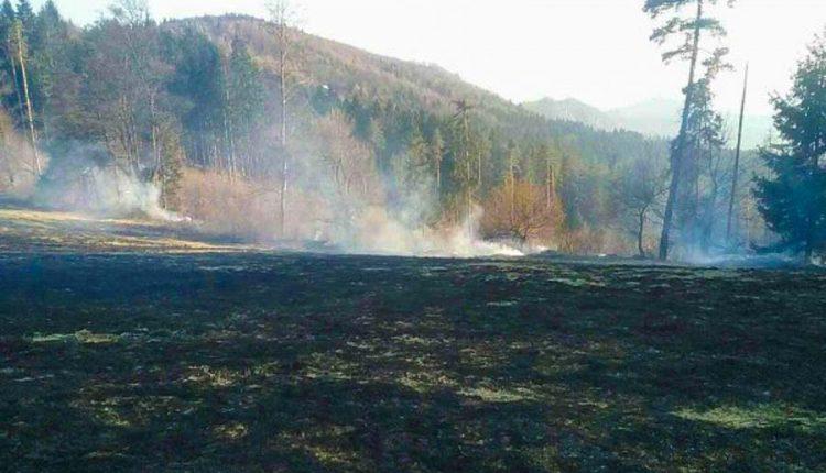 FOTO: Požiar trávnatého a lesného porastu neďaleko Púchova