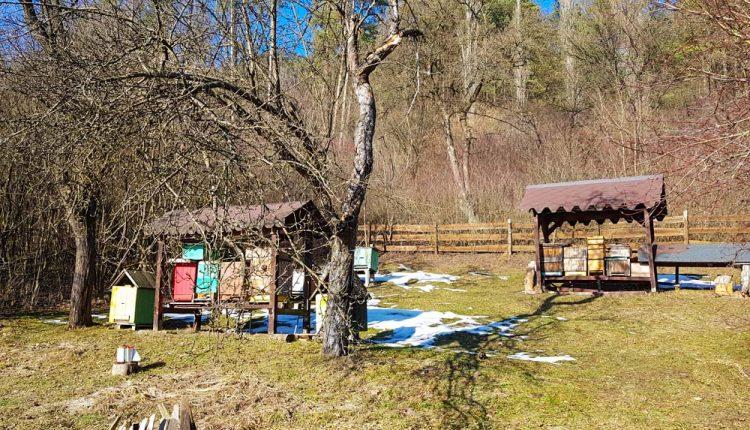 Včelnica bude aj naďalej pod Lachovcom, posunie sa o niekoľko desiatok metrov