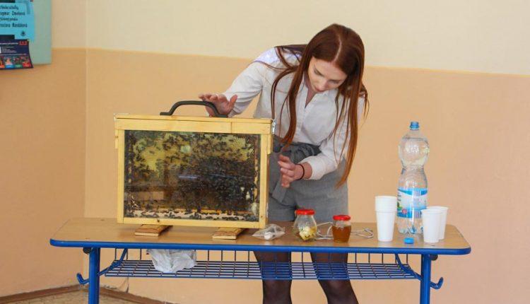 Študenti odprezentovali svoje práce na krajskej prehliadke Stredoškolskej odbornej činnosti