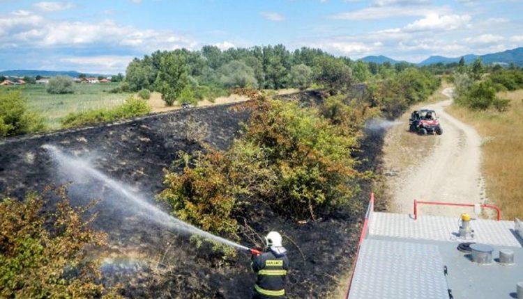 Chráňme lesy pred požiarmi