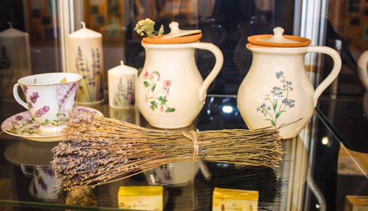 V župnom múzeu v Považskej Bystrici môžete spoznať čarovnú moc rastlín