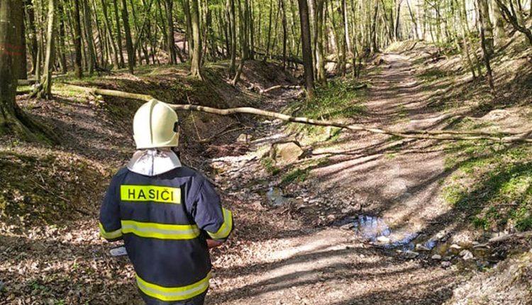 Hrozia lesné požiare, hasiči zvýšili hliadkovaciu činnosť