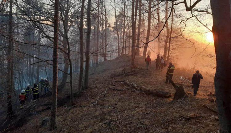 Hasiči prezradili bližšie informácie o požiari v lese