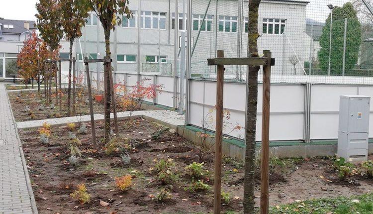 Vďaka Zeleným očiam skrášlil kraj v Púchove ďalšie enviroprojekty